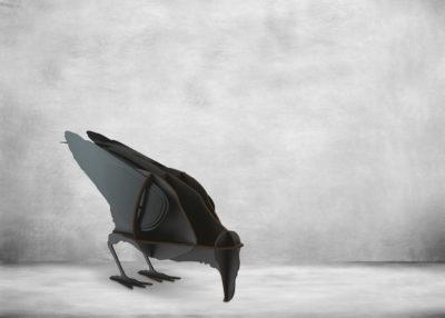SP-Jack-Raven