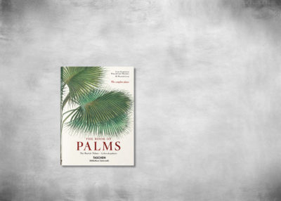 SP-bu-martius_book_of_palms-cover_45447